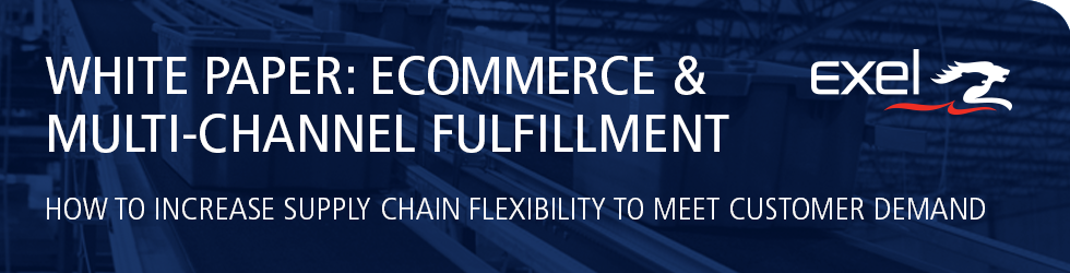 White Paper Download: Ecommerce and Multi-Channel Fulfillment